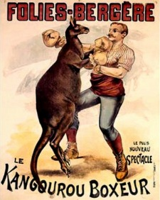 french-boxing-kangaroo