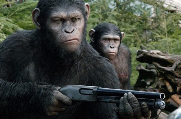 Apes_shotgun