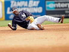 Yankees shortstop Didi Gregorius