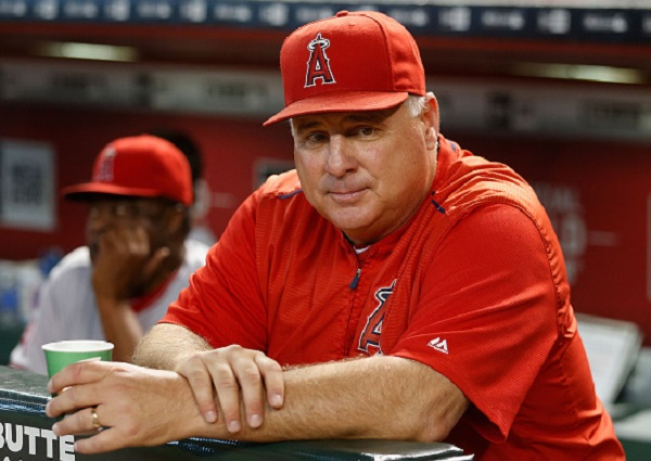 PHOENIX, AZ - JUNE 17: Manager Mike Scioscia #14 of the Los Angeles Angels watches from the dugout during the MLB game against the Arizona Diamondbacks at Chase Field on June 17, 2015 in Phoenix, Arizona. (Photo by Christian Petersen/Getty Images)