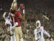 NCAA Football: BCS National Championship-Florida State vs Auburn