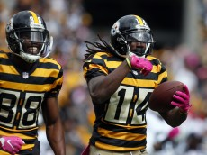 PITTSBURGH, PA - OCTOBER 09:  Sammie Coates #14 of the Pittsburgh Steelers celebrates with Darrius Heyward-Bey #88 after catching a 72 yard touchdown pass in the first quarter during the game against the New York Jets on October 9, 2016 at Heinz Field in Pittsburgh, Pennsylvania.  (Photo by Justin K. Aller/Getty Images)