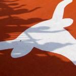 Texas logo in shadow
