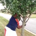 Anthony Adams tackles tree