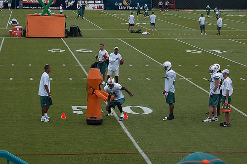 Dolphins_Training_Camp