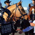 raiders horse2