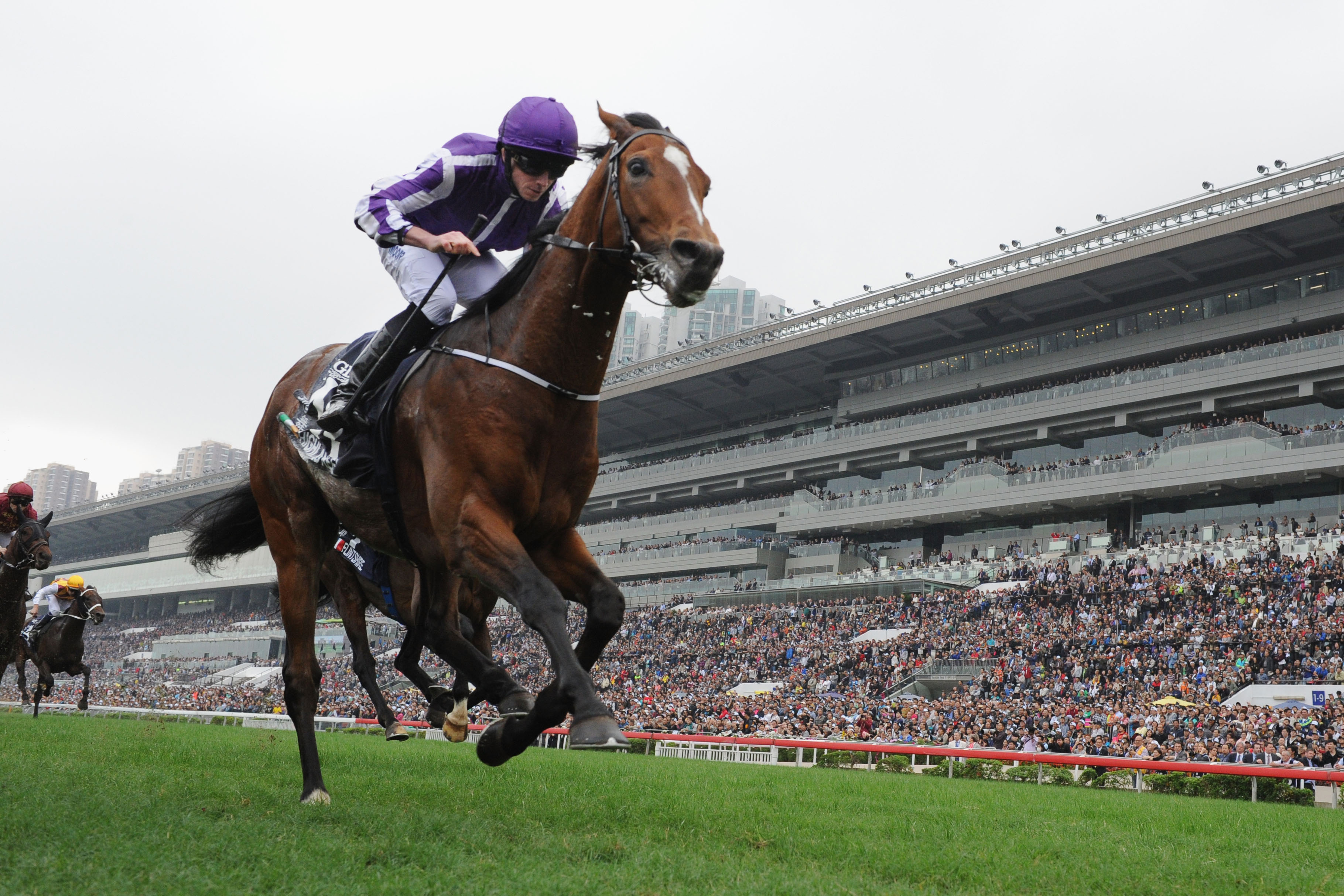 One Sport You Won't Want to Miss – The Horses at Cheltenham Festival