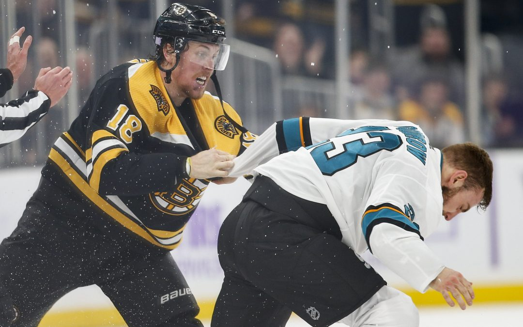Can the Boston Bruins be this year's Tampa Bay Lightning?