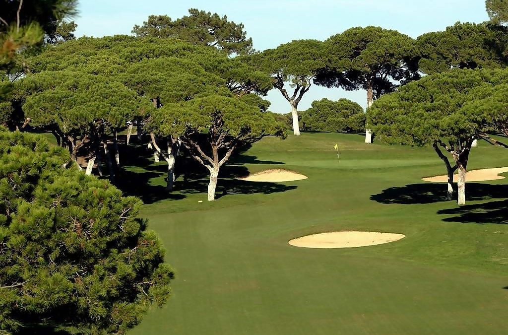 Top 6 golf courses in the world