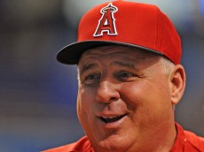 ST. PETERSBURG, FL - AUGUST 27:  Manager Mike Scioscia of the Los Angeles Angels watches batting practice before play against the Tampa Bay Rays August 27, 2013 at Tropicana Field in St. Petersburg, Florida. (Photo by Al Messerschmidt/Getty Images)
