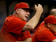 ST. PETERSBURG, FL - JUNE 11:  Manager Mike Scioscia #14 of the Los Angeles Angels yells at umpires from the dugout during the first inning of a game against the Tampa Bay Rays on June 11, 2015 at Tropicana Field in St. Petersburg, Florida.  (Photo by Brian Blanco/Getty Images) *** Local Caption *** Mike Scioscia
