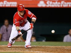ANAHEIM, CA - JUNE 22:  Daniel Robertson #44 of the Los Angeles Angels bunts the ball allowing Erick Aybar #2 of the Los Angeles Angels to score giving the Angels the lead over the Houston Astros in the eighth inning at Angel Stadium of Anaheim on June 22, 2015 in Anaheim, California.  (Photo by Joe Scarnici/Getty Images)