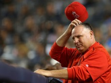 NEW YORK, NY - JUNE 6: Manager Mike Scioscia #14 of the Los Angeles Angels of Anaheim scratches his head during a game against the New York Yankees in the third inning at Yankee Stadium on June 6, 2015 in the Bronx borough of New York City. (Photo by Adam Hunger/Getty Images)