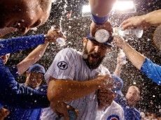 CHICAGO, IL - SEPTEMBER 22:  The Chicago Cubs celebrate with Jake Arrieta #49 on his 20th win of the season against the Milwaukee Brewers at Wrigley Field on September 22, 2015 in Chicago, Illinois. The Chicago Cubs won 4-0.  (Photo by Jon Durr/Getty Images)
