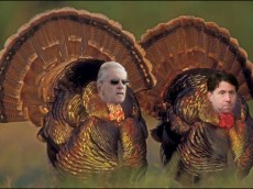 Wilpon Turkeys