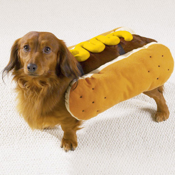 hot-dog-mustard-small