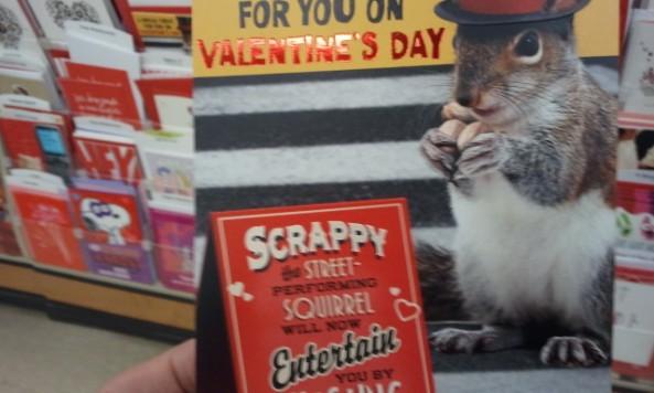 scrappysquirrel