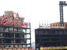 VIDEO BOARDS BUSCH