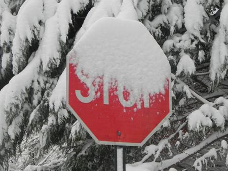 Princeton_Snow_Stop_Sign