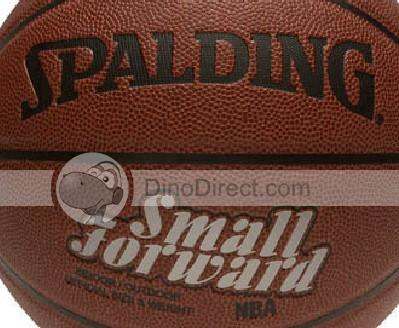 small forward basketball