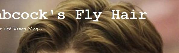 babcocksflyhairlogo