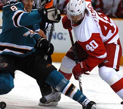 sharks_redwings