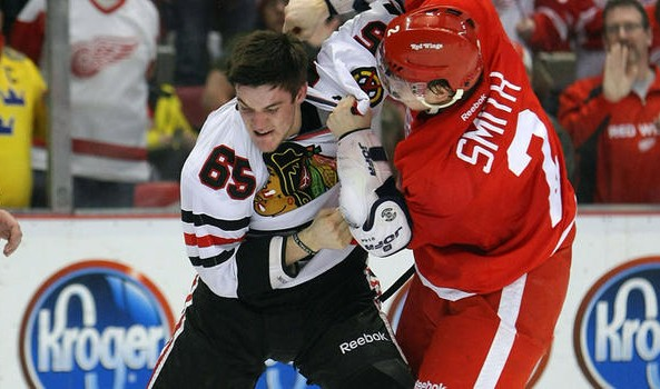 hawks-wings-fight