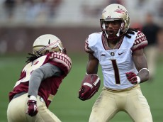 TALLAHASSEE, FL - APRIL 11:  Ermon Lee #1 of the Gold team is pursued by Malique Jackson #28 of the Garnet team during Florida State's Garnet and Gold spring game at Doak Campbell Stadium on April 11, 2015 in Tallahassee, Florida.  (Photo by Stacy Revere/Getty Images)