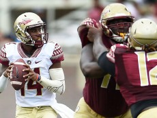 TALLAHASSEE, FL - APRIL 11:  De'Andre Johnson #14 of the Gold team drops back to pass against the Garnet team during Florida State's Garnet and Gold spring game at Doak Campbell Stadium on April 11, 2015 in Tallahassee, Florida.  (Photo by Stacy Revere/Getty Images)