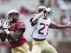 TALLAHASSEE, FL - APRIL 11:  Ja'Vonn Harrison #13 of the Garnett team catches a pass in front of Marquez White #27 of the Gold team during Florida State's Garnet and Gold spring game at Doak Campbell Stadium on April 11, 2015 in Tallahassee, Florida.  (Photo by Stacy Revere/Getty Images)