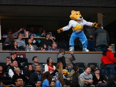 at Pepsi Center on March 3, 2015 in Denver, Colorado. The Nuggets defeated the Bucks 106-95. NOTE TO USER: User expressly acknowledges and agrees that, by downloading and or using this photograph, User is consenting to the terms and conditions of the Getty Images License Agreement.