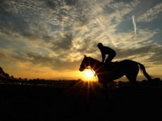 SARATOGA SPRINGS, NY - AUGUST 16:  horse and rider trains as the sun rises at Saratoga Racetrack on August 16, 2013 in Saratoga Springs, New York.  (Photo by Al Bello/Getty Images)
