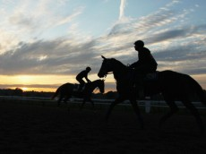 SARATOGA SPRINGS, NY - AUGUST 16:  Horses and riders train at sunrise at Saratoga Racetrack on August 16, 2013 in Saratoga Springs, New York.  (Photo by Al Bello/Getty Images)