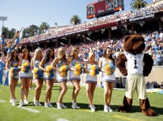 PALO ALTO, CA - OCTOBER 19:  The UCLA Bruins cheerleaders and mascot stand on the sidelines during their game against the Stanford Cardinal at Stanford Stadium on October 19, 2013 in Palo Alto, California.  (Photo by Ezra Shaw/Getty Images)