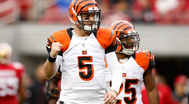 SANTA CLARA, CA - DECEMBER 20:  AJ McCarron #5 of the Cincinnati Bengals celebrates after a 20-yard touchdown pass against the San Francisco 49ers during their NFL game at Levi's Stadium on December 20, 2015 in Santa Clara, California.  (Photo by Ezra Shaw/Getty Images)