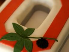 ohio-state-buckeyes-grooms-cake-full