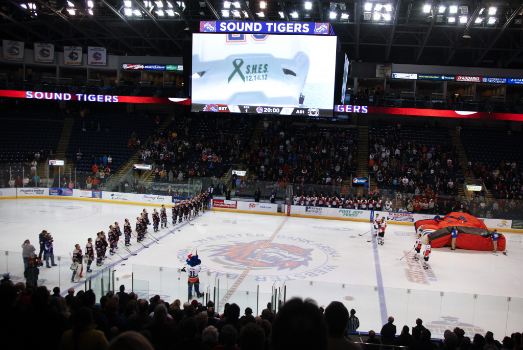 BRIDGEPORT, CT - DECEMBER 22:  Members of the Bridgeport Sound Tigers wear jerseys emblazoned with the names of Sandy Hook Elementary shooting victims during a moment of silence before a game against the Adirondack Phantoms at Webster Bank Arena at Harbor Yard on December 22, 2012 in Bridgeport, Connecticut.</p /> </p><!-- google_ad_section_end --></div>     <div class=