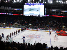 BRIDGEPORT, CT - DECEMBER 22:  Members of the Bridgeport Sound Tigers wear jerseys emblazoned with the names of Sandy Hook Elementary shooting victims during a moment of silence before a game against the Adirondack Phantoms at Webster Bank Arena at Harbor Yard on December 22, 2012 in Bridgeport, Connecticut.  (Photo by Jeff Zelevansky/Getty Images)