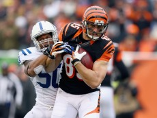 CINCINNATI, OH - DECEMBER 08: Tyler Eifert #85 of the Cincinnati Bengals runs with the ball while defended by Jerrell Freeman #50 of the Indianapolis Colts during the NFL game at Paul Brown Stadium on December 8, 2013 in Cincinnati, Ohio.  (Photo by Andy Lyons/Getty Images)