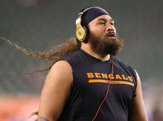 CINCINNATI, OH - NOVEMBER 6 :  Domata Peko #94 of the Cincinnati Bengals warms up prior to the start of the game against the Cleveland Browns at Paul Brown Stadium on November 6, 2014 in Cincinnati, Ohio. (Photo by Andy Lyons/Getty Images)