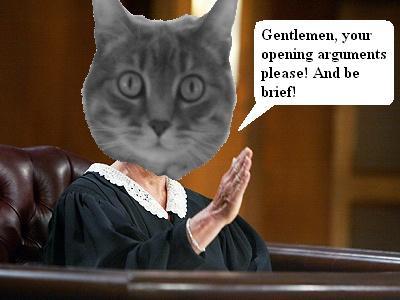 judgepurrgeronopen1