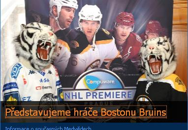 Boston Bruins Liberec Tigers