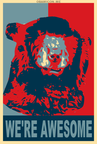 TheBearCampaign