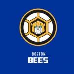 Boston-Bees-Tarnsformers-DavesGeekyIdeas