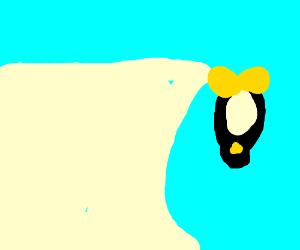 ykCtr8YW6n-8