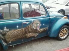 Jaguars Beetle