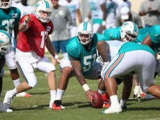 Dolphins Camp Day 6(1)