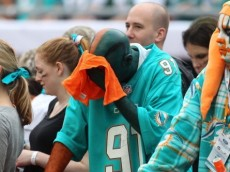 Dolphin-fan-sad