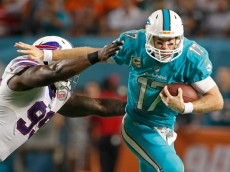 MIAMI GARDENS, FL - NOVEMBER 13:  Quarterback Ryan Tannehill #17 of the Miami Dolphins scrambles for yardage as he is pursued by defensive tackle Kyle Williams #95 of the Buffalo Bills in the second quarter in a game at Sun Life Stadium on November 13, 2014 in Miami Gardens, Florida.  (Photo by Marc Serota/Getty Images)