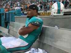JACKSONVILLE, FL - SEPTEMBER 20:  Olivier Vernon #50 of the Miami Dolphins looks on during a game against the Jacksonville Jaguars at EverBank Field on September 20, 2015 in Jacksonville, Florida.  (Photo by Mike Ehrmann/Getty Images)